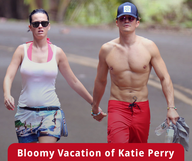 Bloomy Vacation of Katie Perry