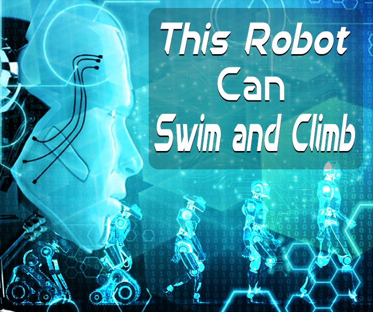 The Robot Can Swim and Climb