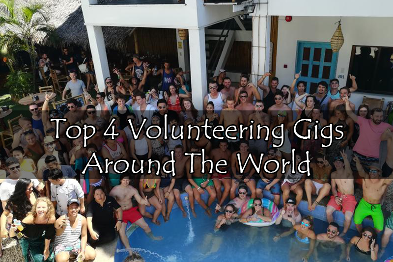 Top 4 Volunteering Gigs Around The World